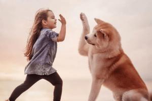 doggo kiddo