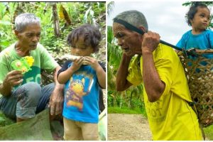 75-Year-Old Grandpa Carries Grandson in a Basket While Working in Farm
